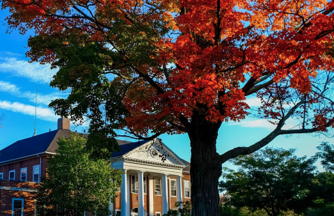 Fall at UNH Franklin Pierce