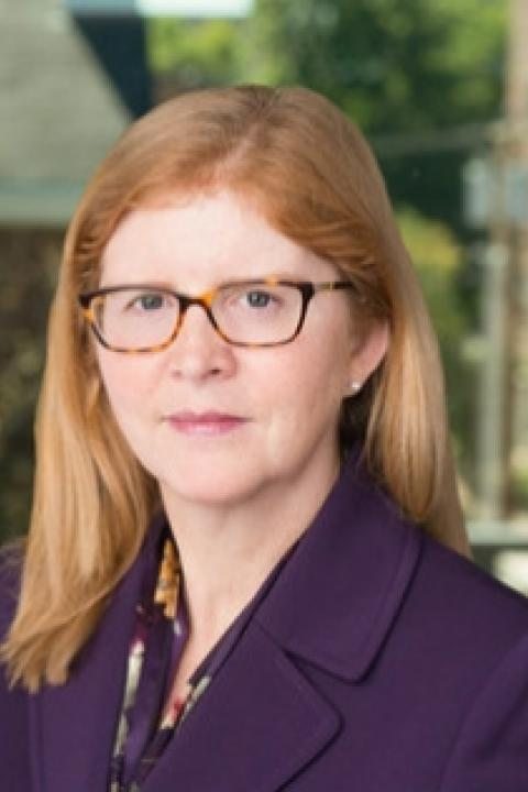 Donna Brown Adjunct Professor UNH Law